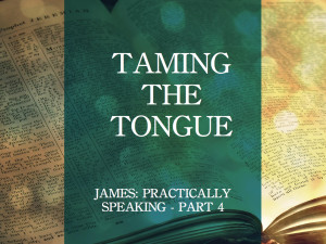 taming the tongue ppt.001